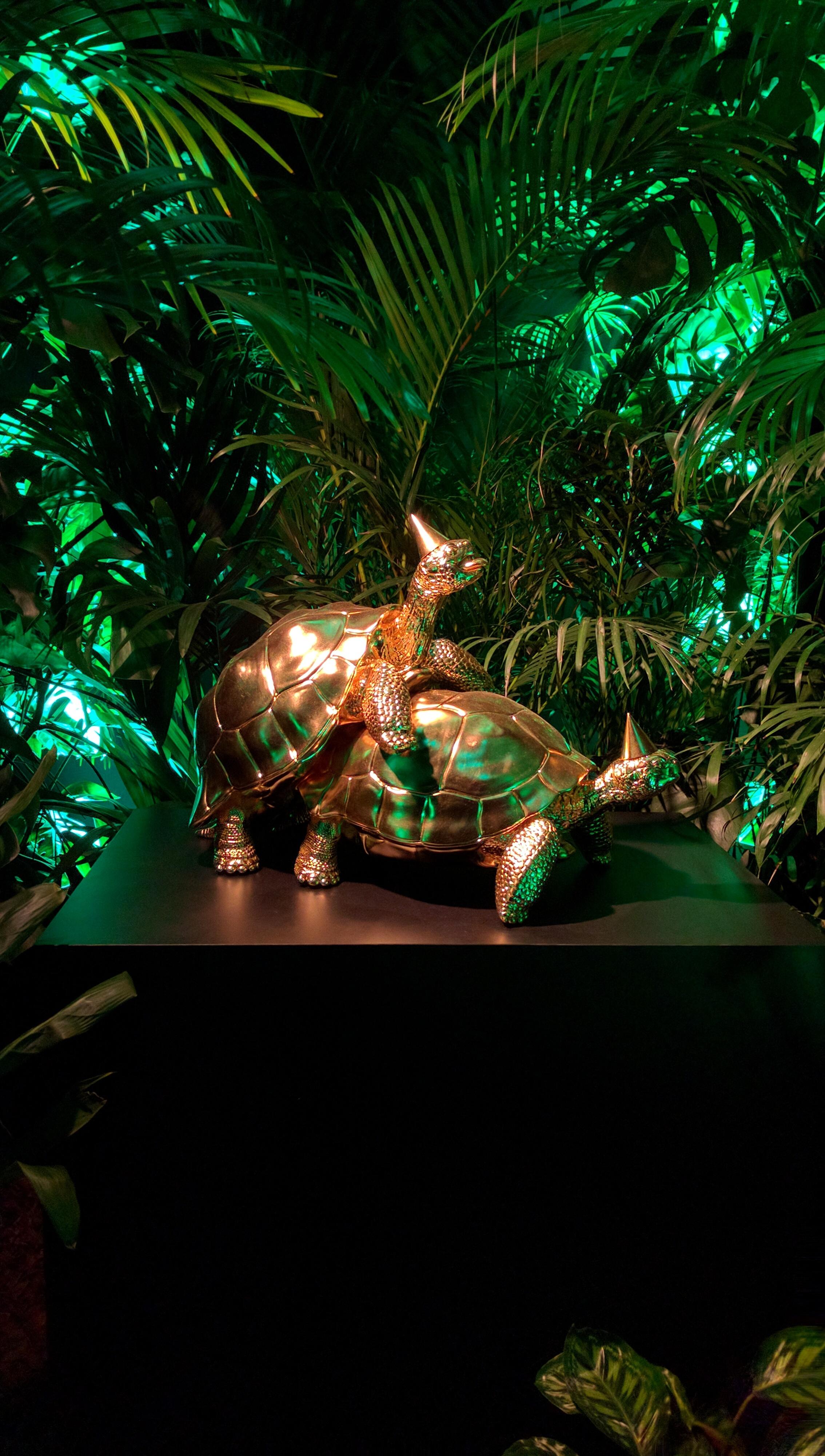 golden-party-turtles.jpg